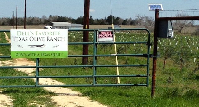 "The sign reads """"Dell's Favorite Texas Olive Ranch  Olives with a Texas Spirit!"""""