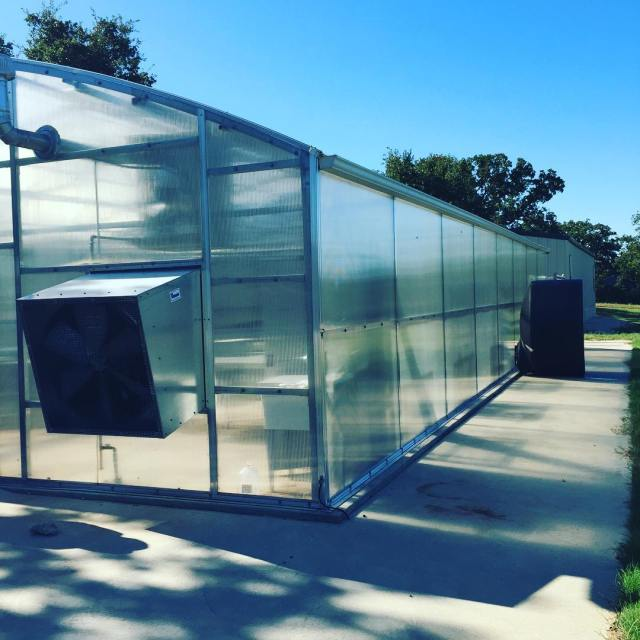 New greenhouse for the agriculture program